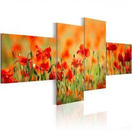 Obraz - Radosna makowa łąka (100x45 cm)