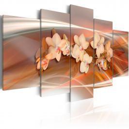 Obraz - Orchidea w ciepłych szarościach (100x50 cm)