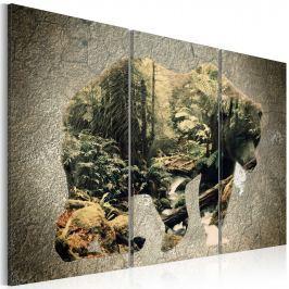 Obraz - Niedźwiedź w lesie (60x40 cm)