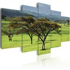 Obraz - Zielona Afryka (100x50 cm)