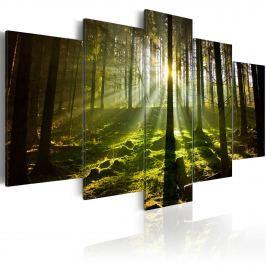 Obraz - Wiosenna cisza (100x50 cm)