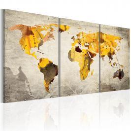 Obraz - Żółte kontynenty (60x30 cm)