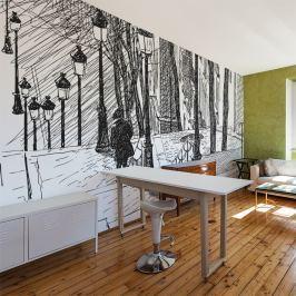 Fototapeta - schody - Montmartre (450x270 cm)