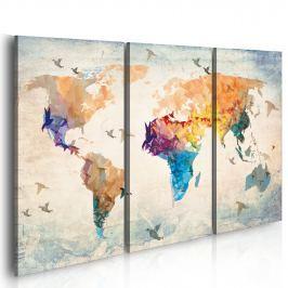 Obraz - Free as a bird - triptych (60x40 cm)