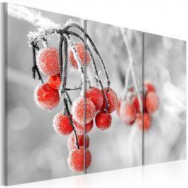 Obraz - Winter is coming (60x40 cm)