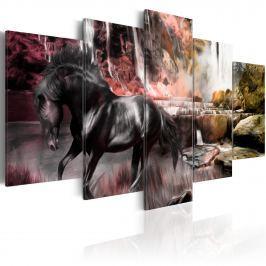Obraz - Czarny koń na tle karmazynowego nieba (100x50 cm)