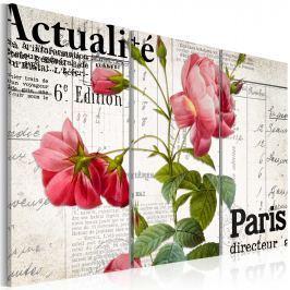 Obraz - Paris directeur (60x40 cm)