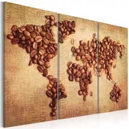 Obraz - Kawy świata - tryptyk (60x40 cm)