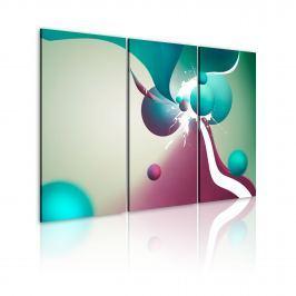Obraz - Kolorowa eksplozja (60x40 cm)