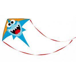 Latawiec większy - rekin