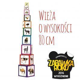 Piramida zabaw - 10 kostek ze zdjęciami i polskimi napisami - Zwierzęta