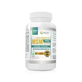 Wish Pharmaceutical MSM 500mg Leucyna 250 kaps Stawy